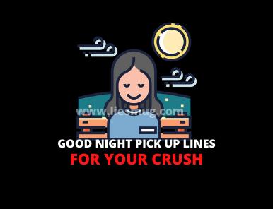 Good Night Pick Up Lines