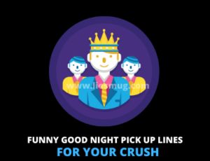 Funny Good Night Pick up Lines