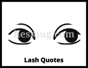 Lash Quotes Top 100+ Lash Quotes for You